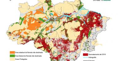 florestas públicas na amazônia