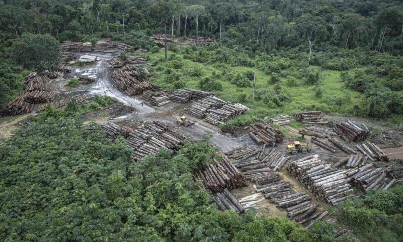 Florestas Tropicais