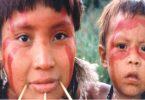 garimpeiros ilegais Yanomami
