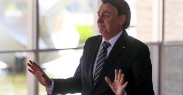 Bolsonaro capim
