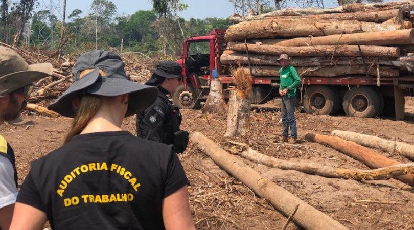 trabalho escravo desmatamento