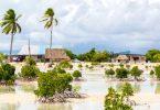 ONU refugiados climáticos