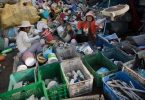 plasticos Brasil China