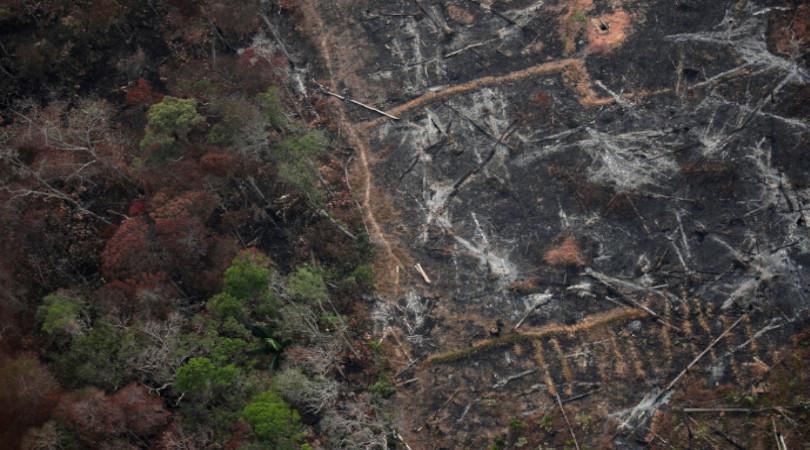 Amazônia: desmatamento