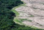 Floresta Amazônica degradação