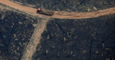 desmatamento Amazonia dobra