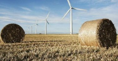 COP26 emissões líquidas zero