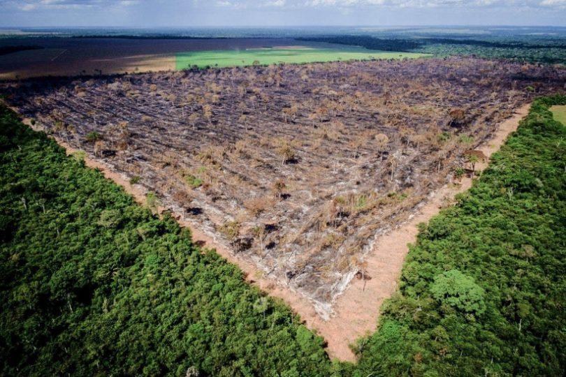 desmatamento Amazônia Imazon