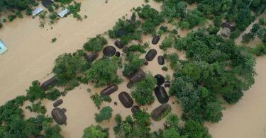 enchente amazônia