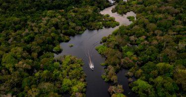Amazônia caos fundiário
