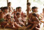 coronavírus indígenas