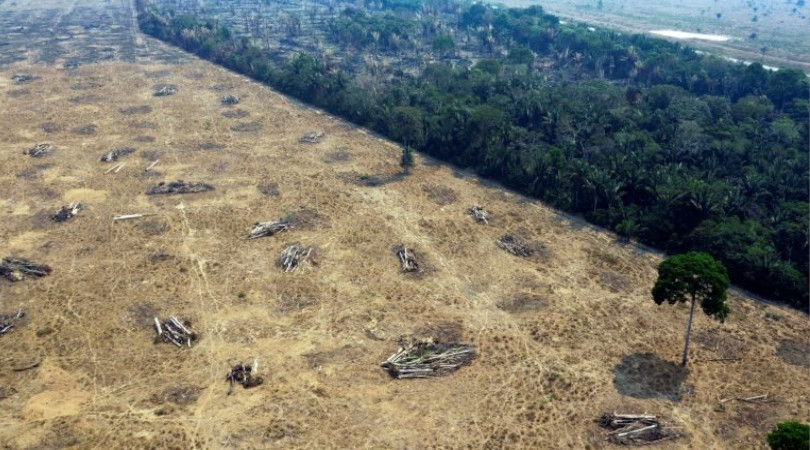 desmatamento Amazonia aumenta