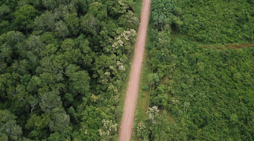 estradas Amazônia