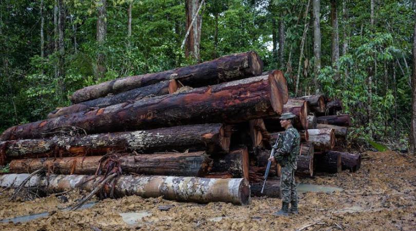 exército Amazônia
