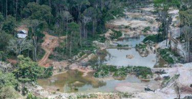 garimpo Amazônia