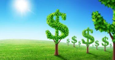 new deal verde