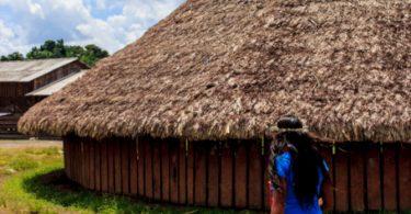 Terras Indígenas desmatamento