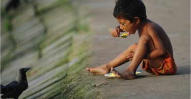 crise alimentar