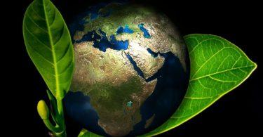 exploração meio ambiente