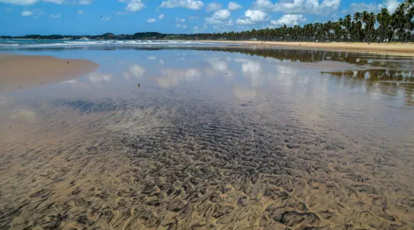 vazamento óleo nordeste