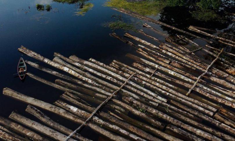GLO Amazônia