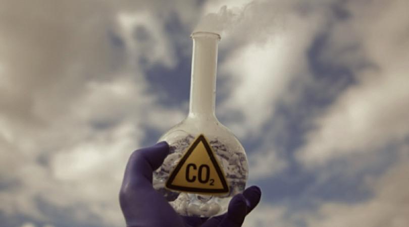 emissões líquidas zero