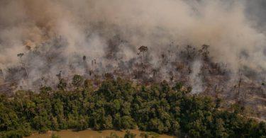 NASA desmatamento