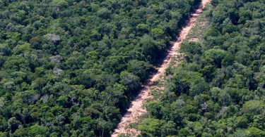 desenvolvimento sustentável amazônia