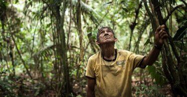 desmatamento Terras Indígenas