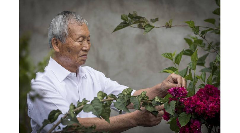 hiroshima 75 anos