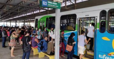 transporte público ônibus