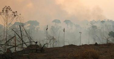 Amazônia incêndios