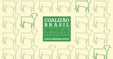 Coalizão gado no Brasil