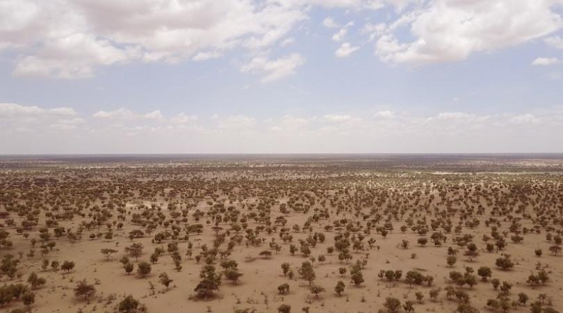 Grande Muralha Verde da África
