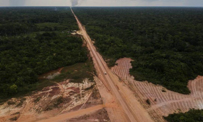 desmatamento florestas intocadas