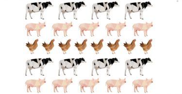 emissões indústria carne laticínios