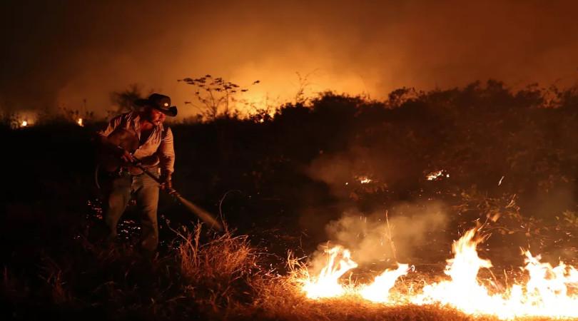 fazendeiros queimadas Pantanal