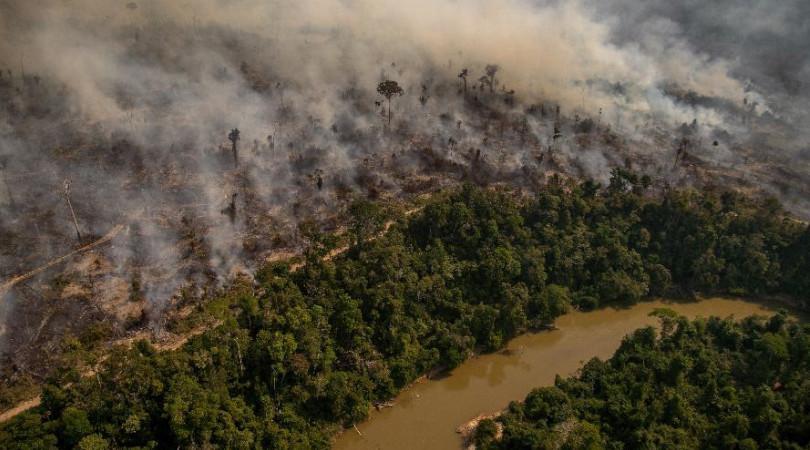 monitoramento desmatamento INPE