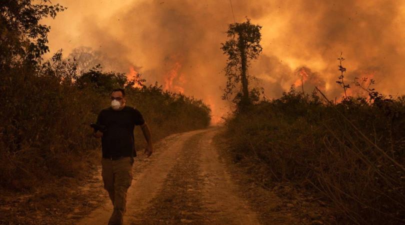 queimadas Pantanal voluntários