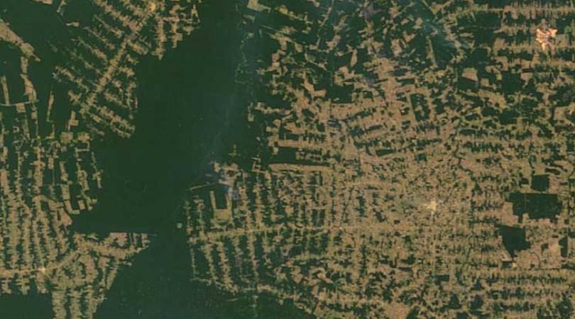 satélite desmatamento