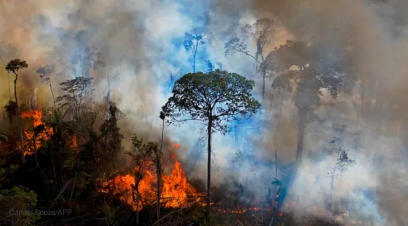Amazônia degradação