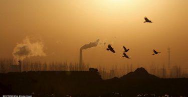 China neutralidade de carbono