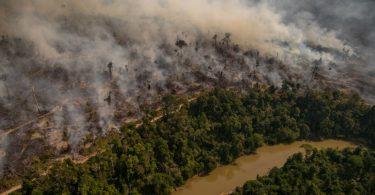 queimadas Amazônia outubro
