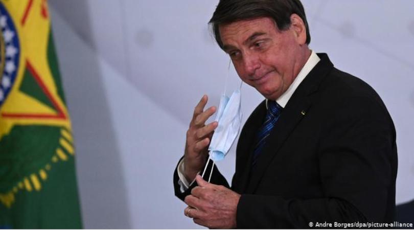 Bolsonaro madeira ilegal repercussões