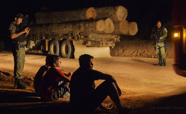 Bolsonaro madeira ilegal