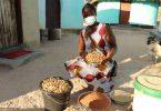 agricultura famiiar africana