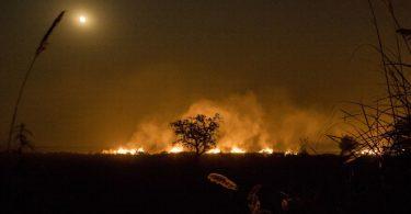 incêndios Índia