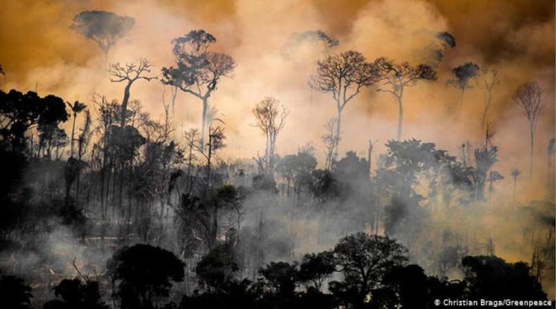 queimadas Amazônia efeitos