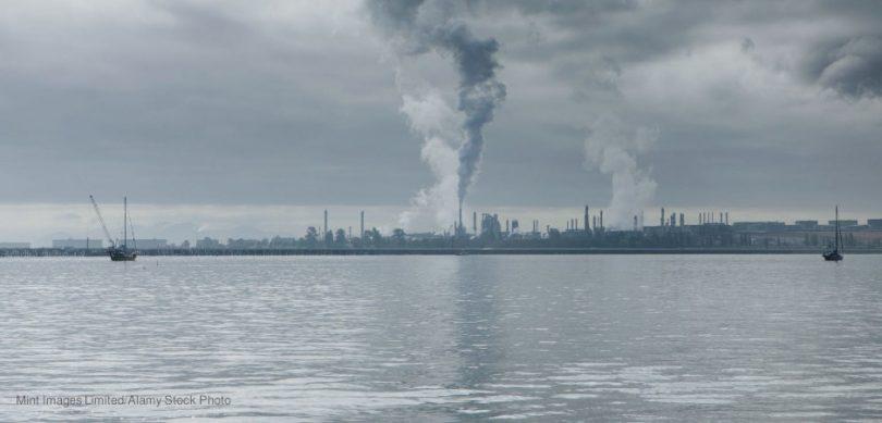 sumidouro oceânico de carbono
