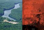 Amazônia pressão